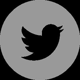 Autofusion Twitter